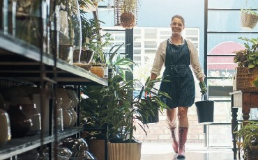 Employee carrying plants inside store.